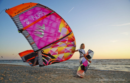 Beetle Kite World Cup St. Peter Ording